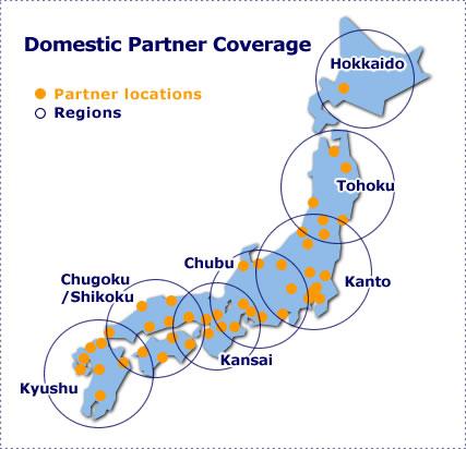 Domestic Partner Coverage